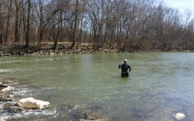 Where and How to Fish the Olentangy River