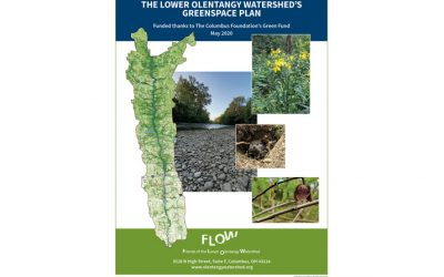 The Lower Olentangy Greenspace Plan is now available