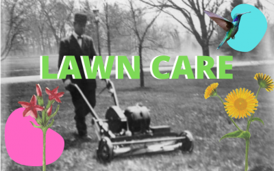 Lawn Care for a Healthier Watershed
