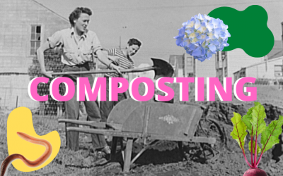 Composting for a Healthier Watershed