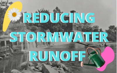 Reducing Stormwater Runoff for a Healthier Watershed